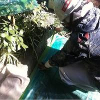 外壁塗装工事 (東京都大田区T様邸)